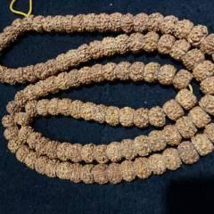 菩提居珠宝行 5瓣尼泊尔金刚菩提手串,藏式,红皮,满肉,秒沉。尺寸12#8mm.