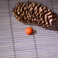 凉山美姑南红玛瑙纯天然手工打磨【柿子红精美戒面28#】正品实拍,仅一款
