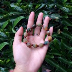 南红石家    天然会理经络石玛瑙手链    黄金珠宝玉器玛瑙