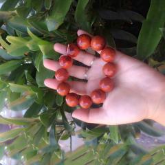 南红石家    彝族手工制作美姑柿子红2.0男式手链    黄金珠宝玉器南红玛瑙
